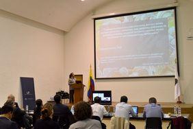 Howard Junca (Foto: Laura Berrío / Vicerrectoría de Investigación)