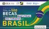 Becas Brasil PAEC OEA-GCUB de maestría y doctorado 2018