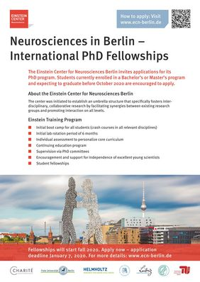 PhD Fellowships 2020 at the Einstein Center for Neurosciences in Germany