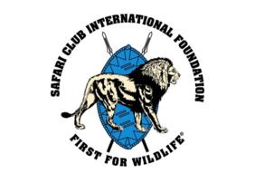 SCI Foundation