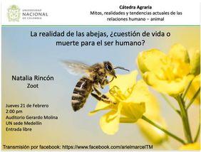 «La realidad de las abejas: ¿cuestión de vida o muerte para el ser humano?» (Natalia Rincón)