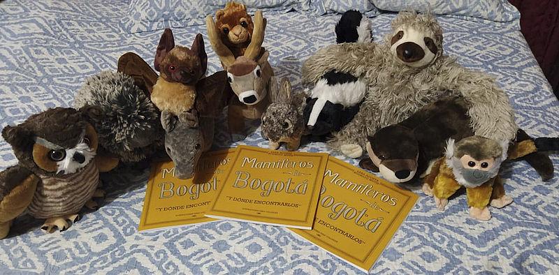 Libros y peluches de animalitos (archivo                       particular vía Unimedios)