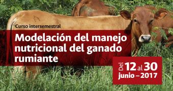 Curso intersemestral «Modelación del manejo nutricional del ganado rumiante»