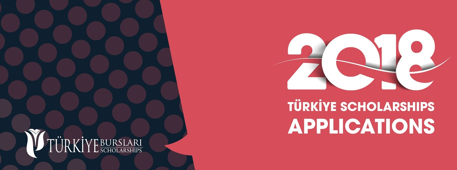 Research Fellowship Programme - Türkiye
