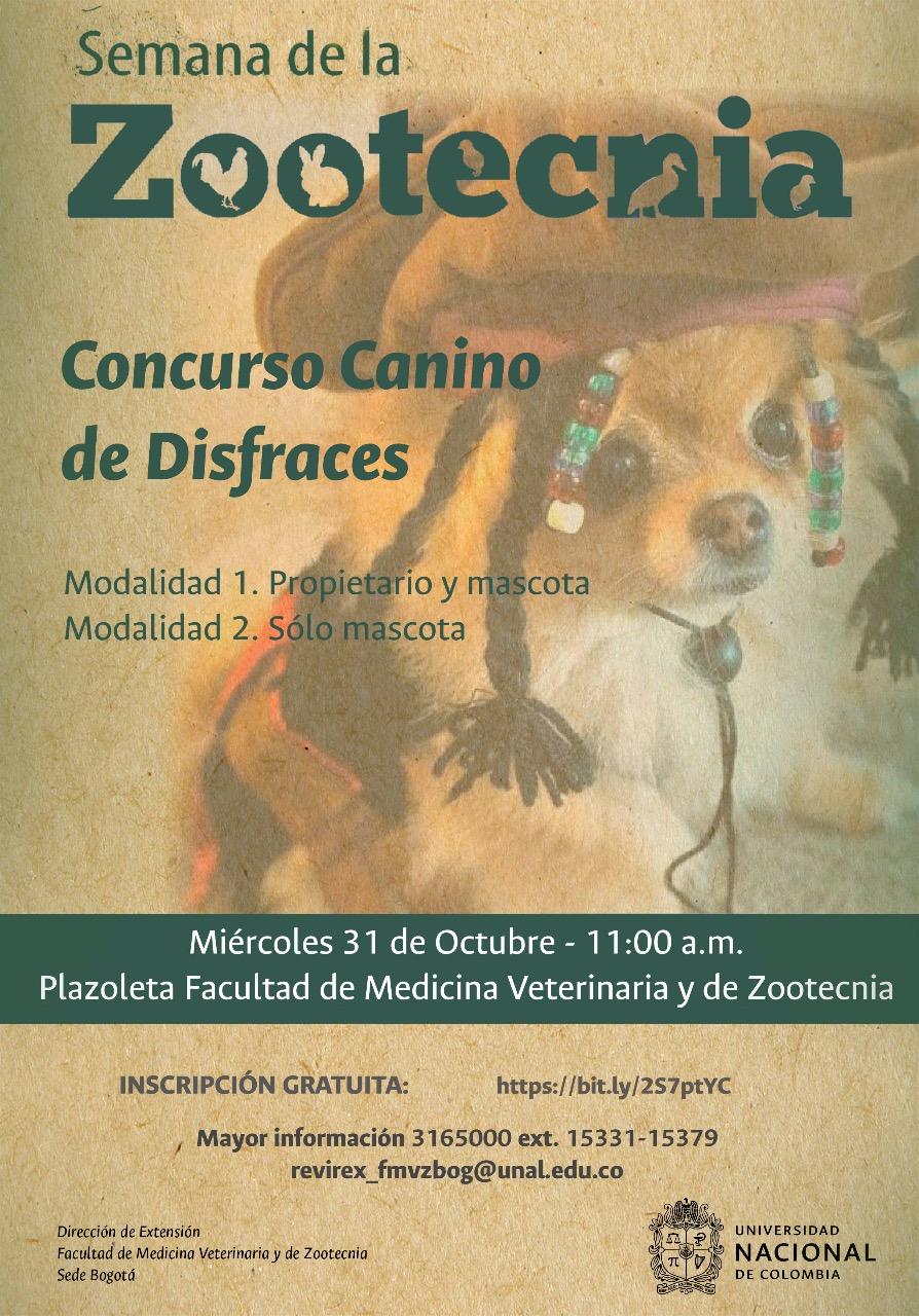 Concurso canino de disfraces
