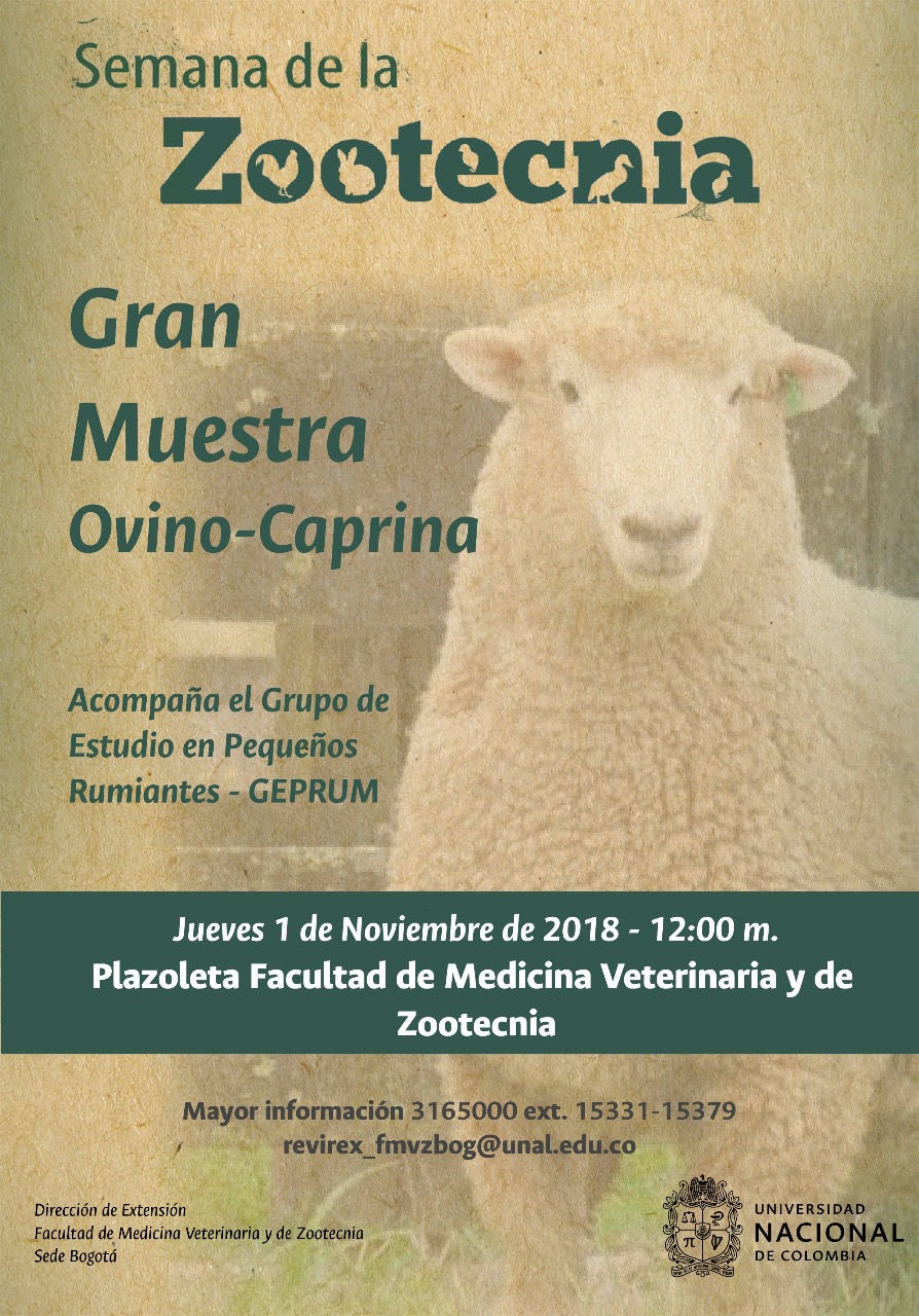 Gran muestra ovino-caprina