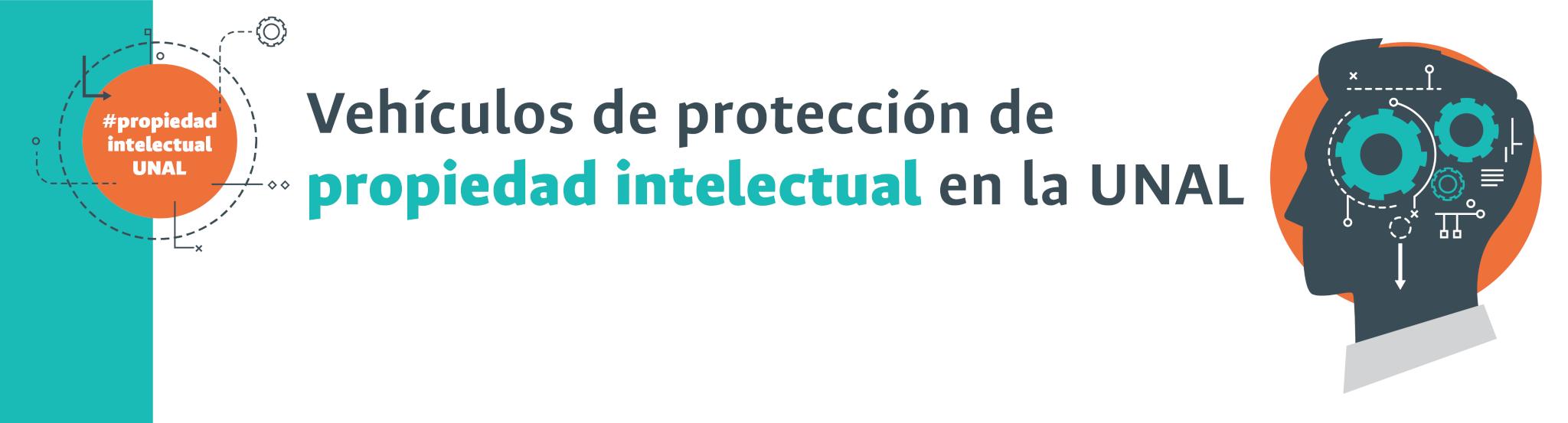 ¿Cuáles son los vehículos de protección de propiedad intelectual?