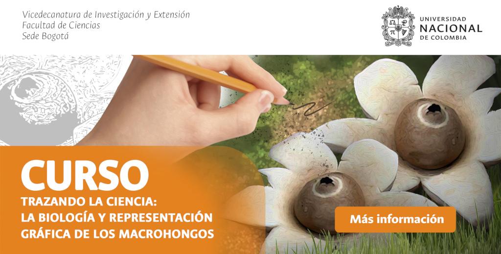 Curso «Trazando la Ciencia: la biología y la representación gráfica de los macrohongos» (2019-I)