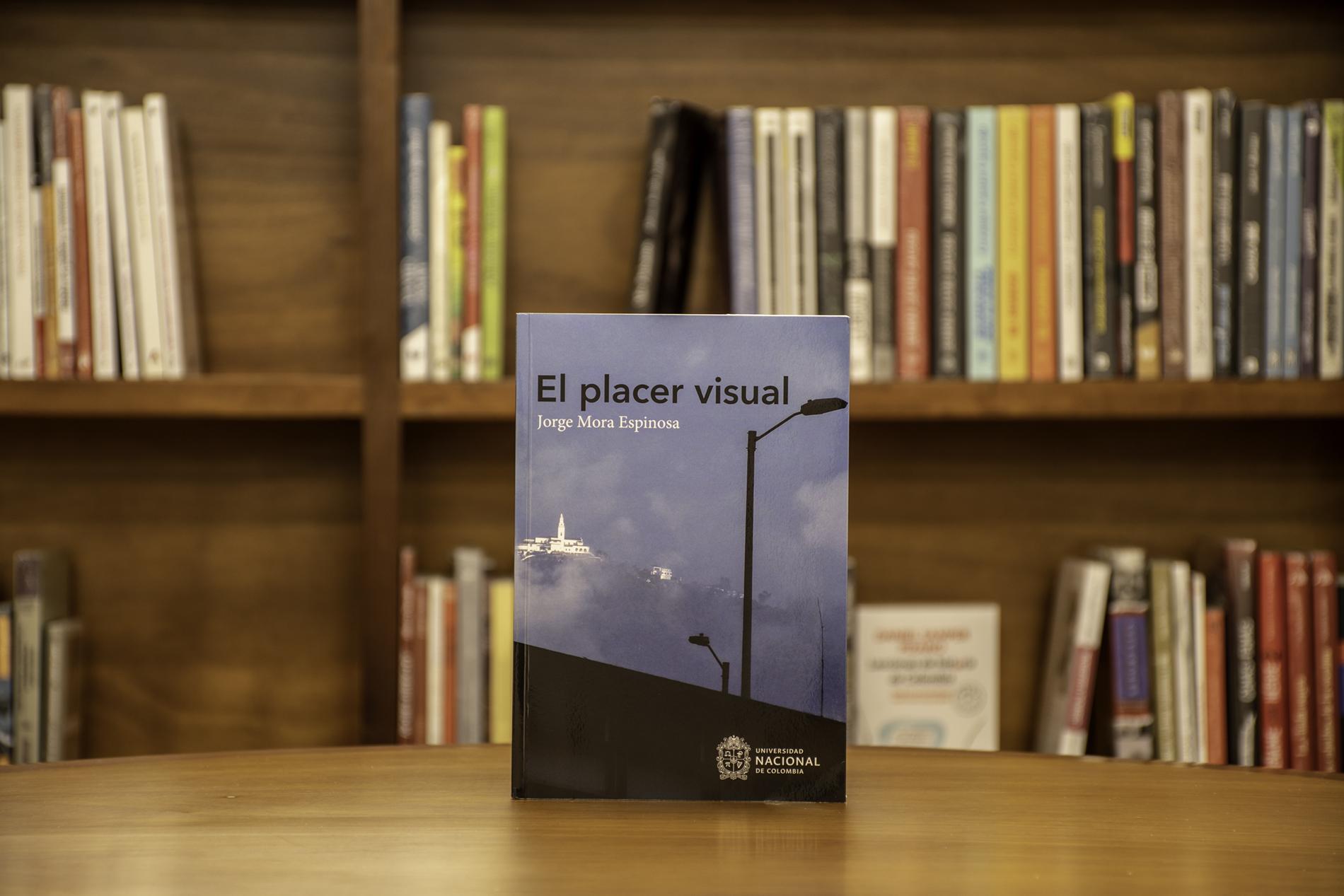 'El placer visual' (Facultad de Artes, U.N. Sede Bogotá)