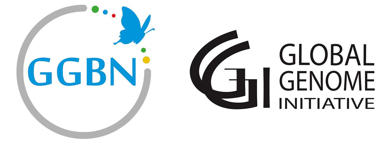 GGBN-GGI
