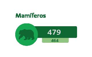 479 Mamíferos