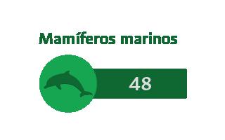 48 Mamíferos marinos